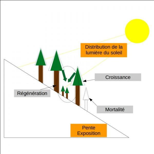 Quel est le facteur abiotique étudié ?