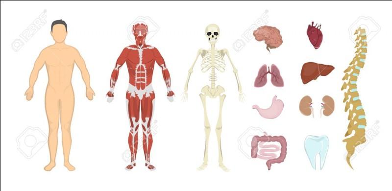 L'homéopathie n'est pas une innovation moderne. Elle était déjà recommandée par...