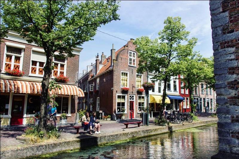 La ville de Delft se situe en Allemagne.