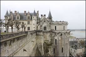 Dans quel département se situe le château d'Amboise ?