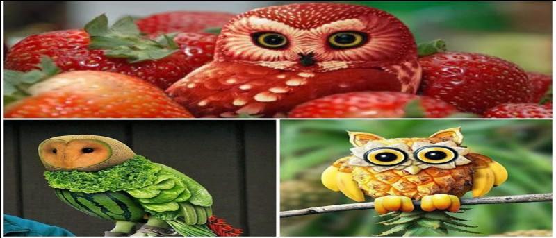 On doit consommer 5 fruits et 5 légumes par jour.