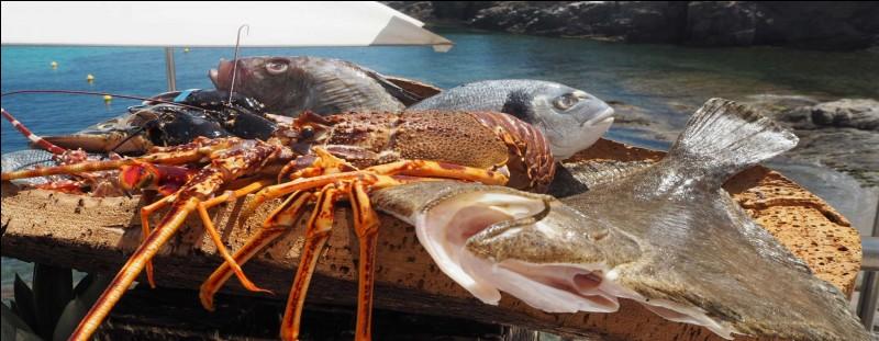 Vous aimez le poisson, alors vous pouvez en consommer 2 fois par semaine. Mais que doit-on respecter ?