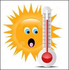 À l'inverse, quelle est la température la plus chaude relevée en France métropolitaine ?