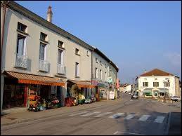 Comment appelle-t-on les habitants de Monthureux-sur-Saône (Vosges) ?
