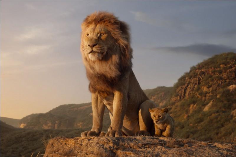 Le lion est...