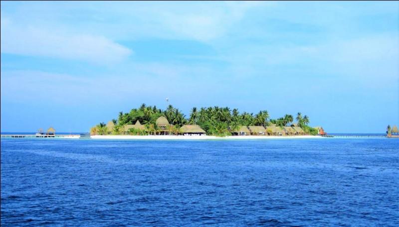 Quel personnage, Brice découvre-t-il sur l'île ?