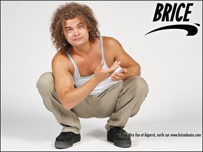 Qui est le meilleur ami de Brice ?