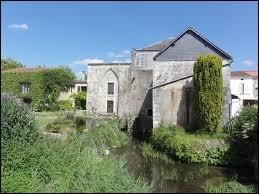 Le point de départ de notre balade aujourd'hui est devant le moulin à eau d'Annepont. Commune Charentaise-Maritime, elle se situe en région ...