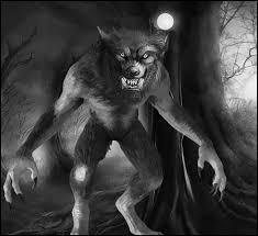 Laquelle de ces balles est capable de tuer un loup-garou ?