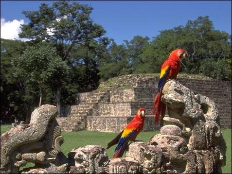 Où devez-vous vous rendre pour visiter les ruines de la cité maya de Copan ?