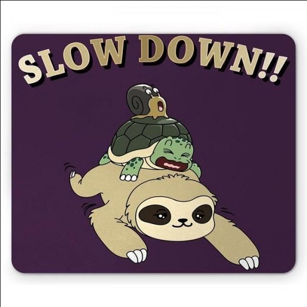 Quel est l'animal le plus lent du monde ?