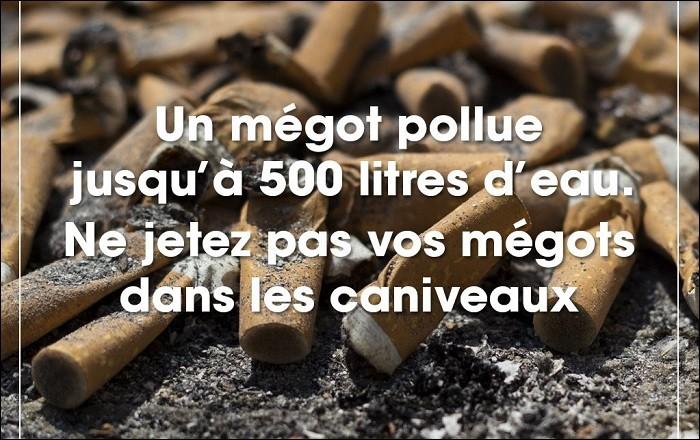 Les mégots de cigarettes polluent.