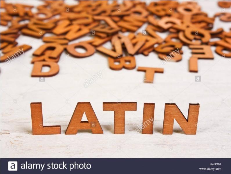 Latin, langue et histoire