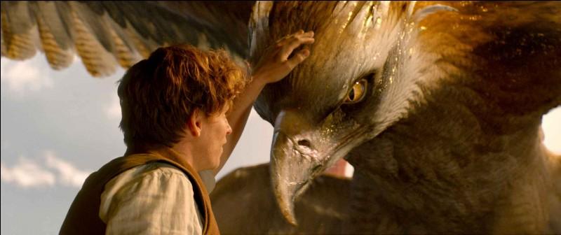 Quels sont les 2 animaux que Norbert Dragonneau garde le plus souvent avec lui ?