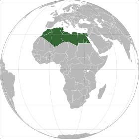 Le plat le plus célèbre d'Afrique du Nord est...