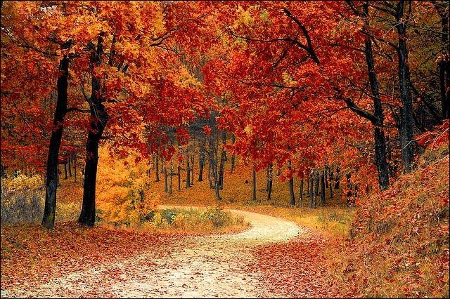 Parmi ces fêtes religieuses françaises, laquelle se déroule en automne ?