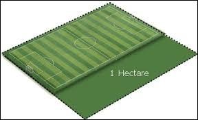 Combien y a-t-il de mètres carrés dans un hectare ?