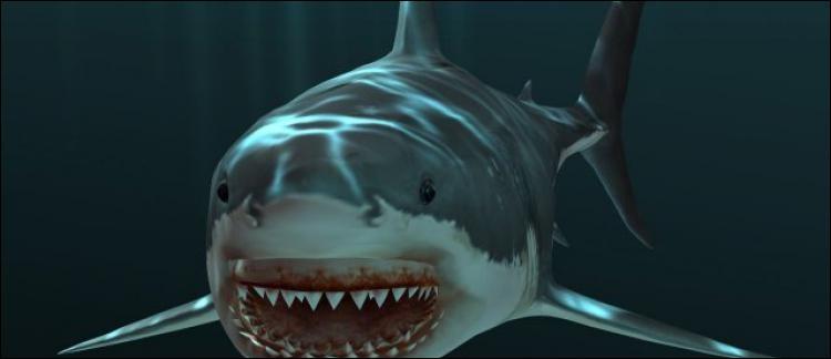 Un film de Steven Spielberg sorti en 1976 avec des requins. Quel est ce film ?