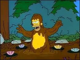 """Dans """"L'Abominable Homme des bois"""", Ned Flanders a acheté quelque chose, ce qui provoque une certaine jalousie du côté d'Homer. Qu'a-t-il acheté ?"""