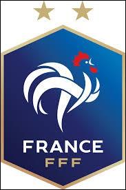 Qui est le meilleur buteur de l'équipe de France ?