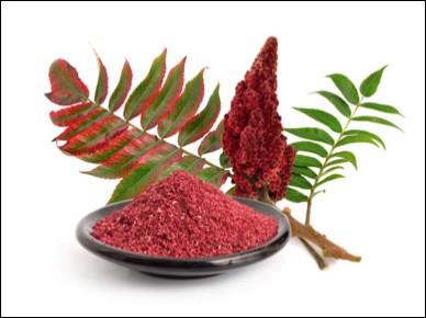 Quel est le nom de cette épice orientale obtenue à partir des baies séchées d'un arbuste du gens pistachier ?