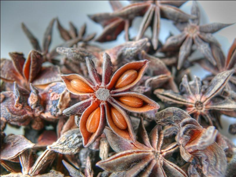 Quel est le nom de cette épice provenant des graines du fruit d'un arbre originaire de Chine ?