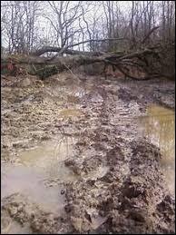 La terre mouillée est aussi appelée la...