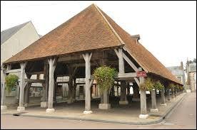 Nous sommes dans le Centre-Val-de-Loire devant la halle du XIIe siècle de Lorris. Ville de la région agricole de l'Orléanais, elle se situe dans le département ...