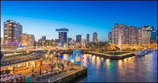Rotterdam est la capitale des Pays-Bas.
