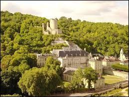 Dans quel département de la région Île-de-France se situe le village de La Roche-Guyon ?