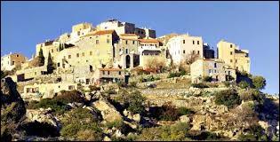 Dans quel département de la région de la Corse se situe le village de Sant'Antonino ?
