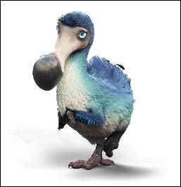 Quel est l'autre dénomination du dodo ?