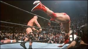 Qui a remporté le Royal Rumble 2002 ?