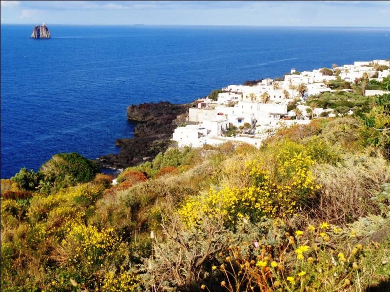 D'après le titre d'un roman de Jules Verne, quel adjectif qualifie l'île ?