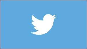 En quelle année le site Twitter a-t-il vu le jour ?