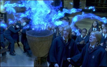 De quelle couleur est la barbe des jumeaux Weasley quand Dumbledore a mis autour de la Coupe de feu un sort pour empêcher les mineurs de tricher ?