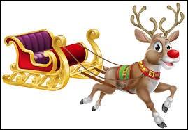 Que tirent les rennes du Père Noël ?