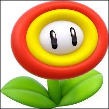 Quel pouvoir cette fleur donne-t-elle à Mario ?