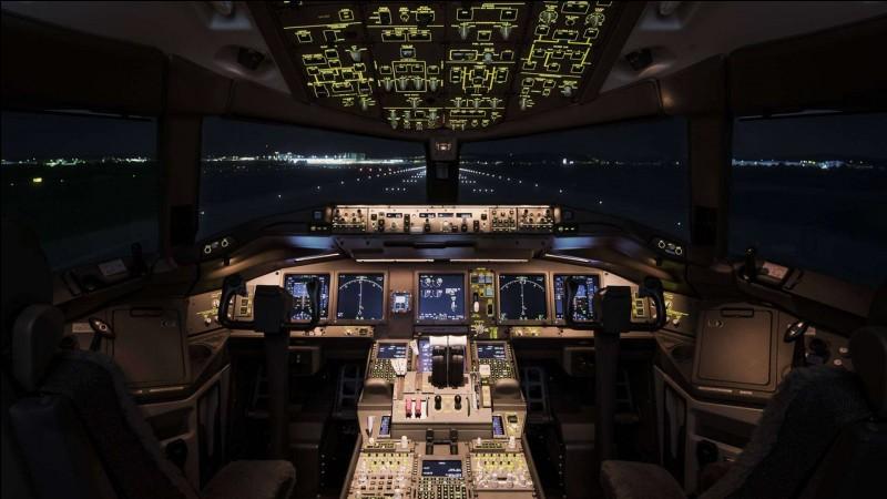 D'après l'image, de quel type d'avion s'agit-il ?