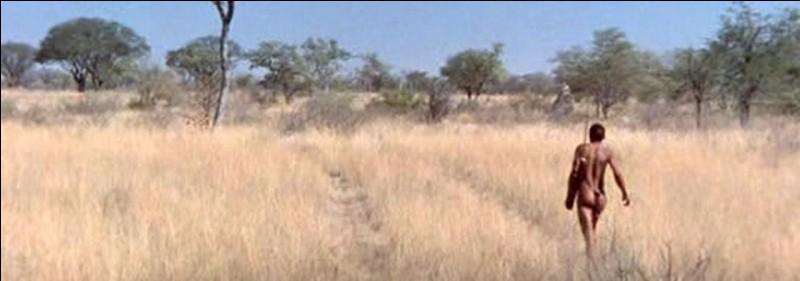 Une bouteille de coca-cola, jetée d'un avion, atterrit en plein milieu d'un village bushmen. Quel est ce film botswanais et sud-africain sorti en 1980 ?