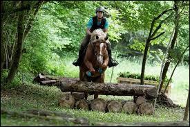 L'équitation est un sport !