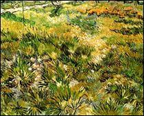 """Qui a peint """"Pré dans le jardin de l'hôpital Saint-Paul"""" ?"""