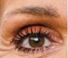 Les yeux de stars
