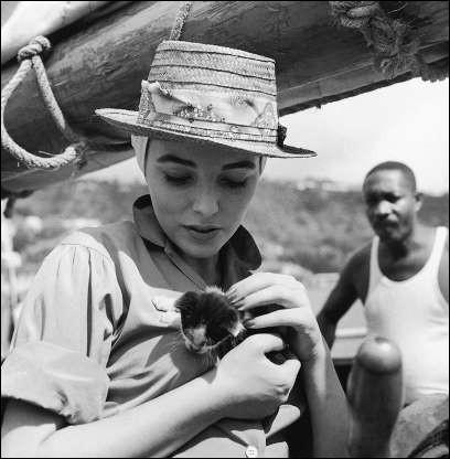 """Cette célèbre actrice anglaise qui deviendra la star de """"Dynastie"""" porte dans ses bras ce petit chaton ! (1957).Indices : actrice née en 1945 - films notables : Absolutely Fabulous - American Horror Story - Le Grand Sommeil"""