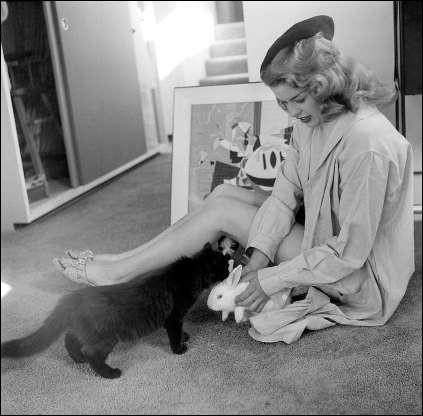 Cette pin-up adore ses boules de poils, un chat noir et un lapin blanc (1955).Indices : actrice née en 1933 - films notables : La Blonde et moi - Un compte à régler - Petit guide pour mari volage