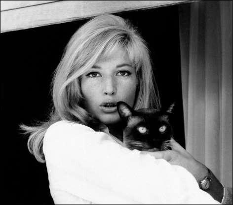 Cette actrice italienne s'octroie un moment câlin avec un chat siamois (1964).Indices : actrice née en 1931 - films notables : Drame de la jalousie - L'Éclipse - La Raison d'État
