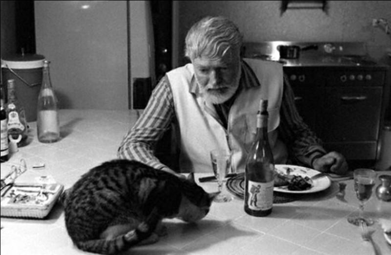 Ce célèbre romancier et prix Nobel est un des amateurs les plus connus de chats. Dans le jardin de sa maison de Key West en Floride, il hébergeait un peu moins d'une centaine de chats (1960).Indices : écrivain né en 1899 - romans notables : Pour qui sonne le glas - L'Adieu aux armes - Les Neiges du Kilimandjaro