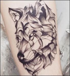 Peut-on tatouer un chat ?