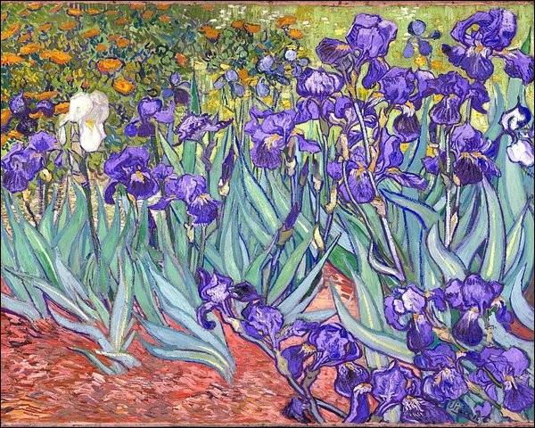 """Qui a peint la tableau """"Iris violets"""" ?"""