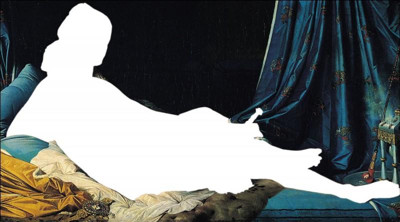 """On peut admirer """"La Grande Odalisque"""" au musée du Louvre. Qu'est-ce qu'une odalisque ?"""